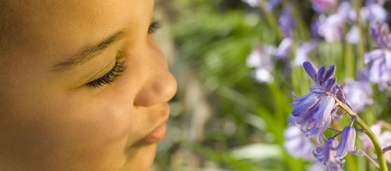 Allergies in Children