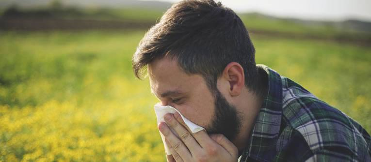 Allergies and Hayfever